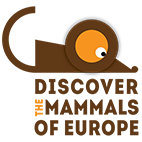 Discover the mammals of Europe