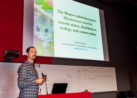 Nedko Nedyalkov presents findings of Roach's mouse-tailed dormouse (Myomimus roachi) at International Dormouse Conference in Liege, Belgium, 2017 (Photo: Dennis Wansink).