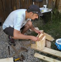 Building nest boxes for Mouse-tailed dormouse (Myomimus roachi) (Photo: Zsolt Hegyeli).