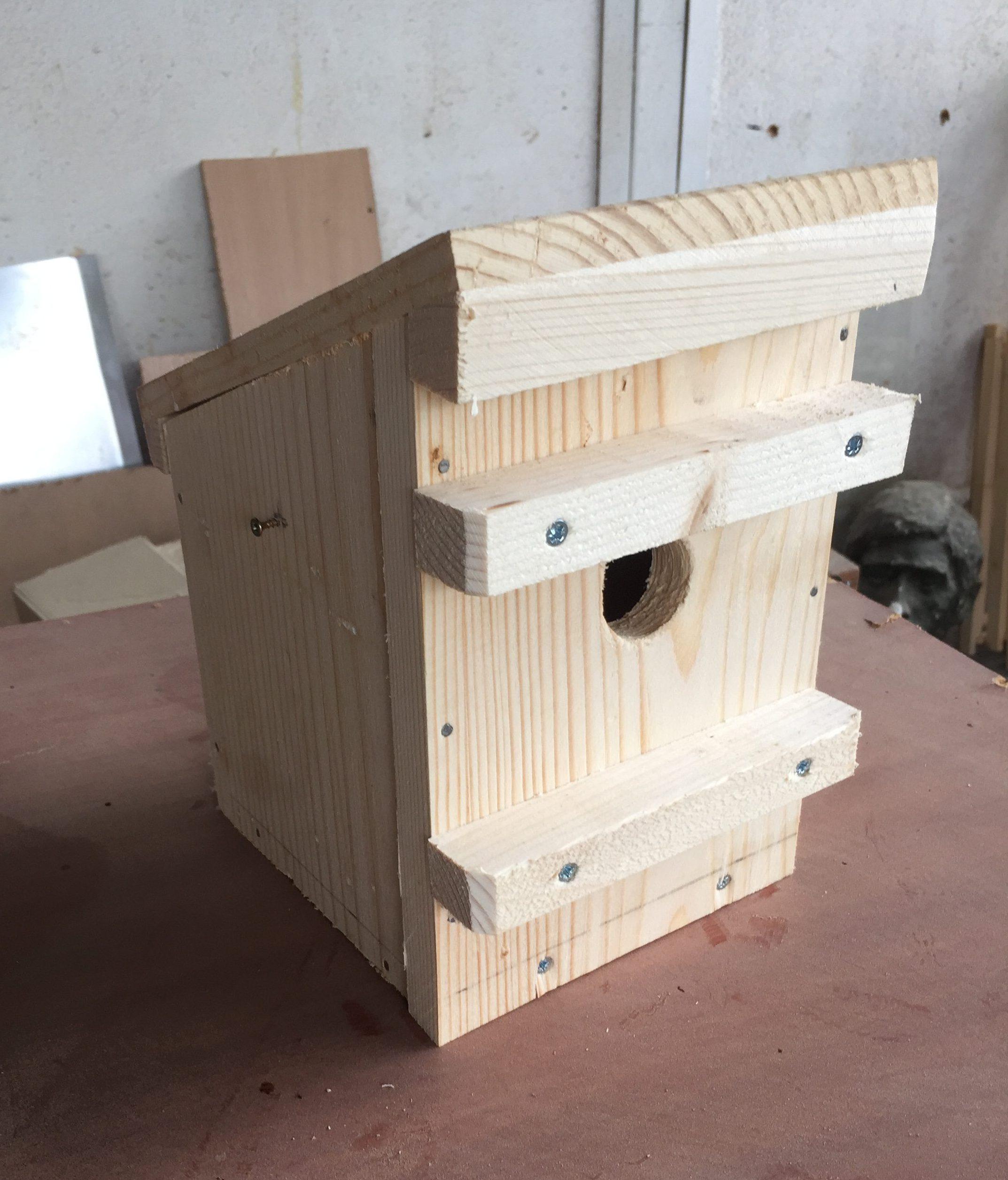The PTES funded nest box (Photo: Svetlana Miteva)