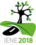 Logo IENE 2018 Conference