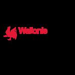 Wallonie environnement SPW
