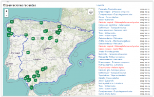 Recent observations of mammals in Spain