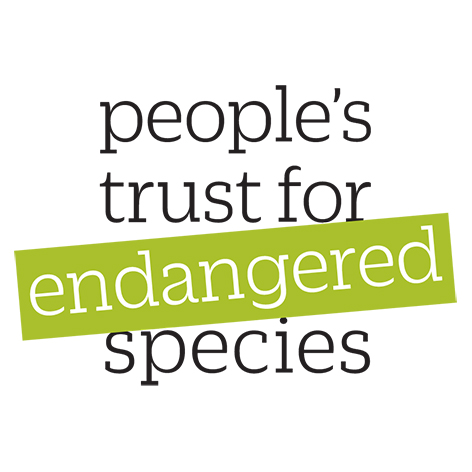Logo People's Trust for Endangered Species (PTES)