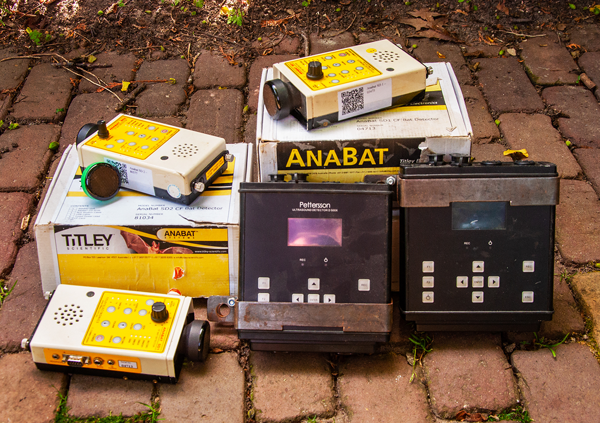 Equipment for mammal research: Anabats and Petterson D500X ultrasound recorders
