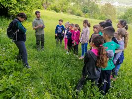 Explain mammal research to children in North Macedonia (Photo: Dime Melovski)