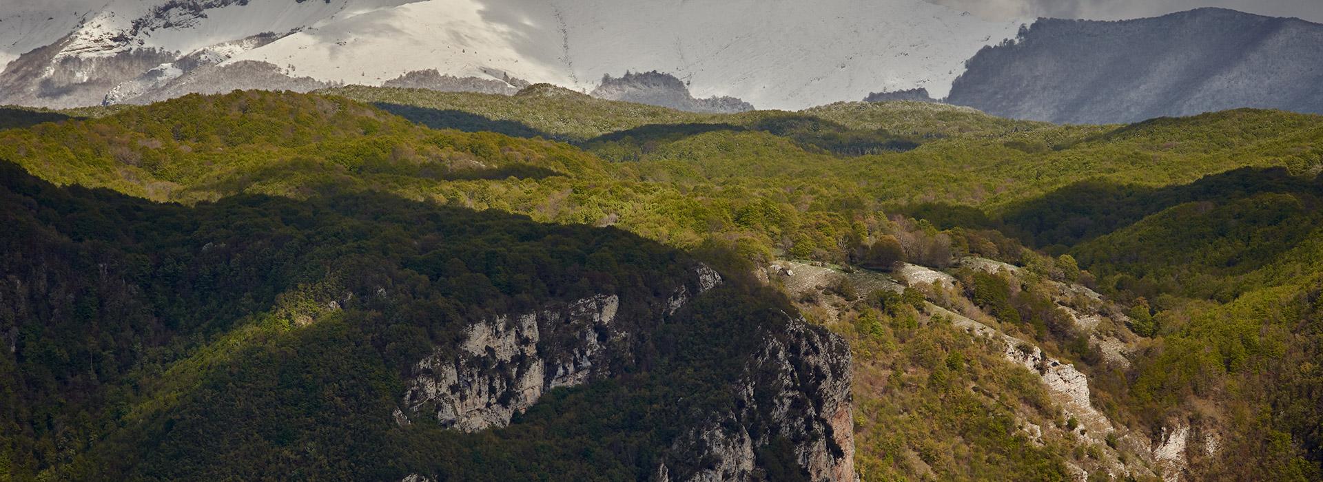 Abruzzo, Itlay (Photo: Salviamo L'Orso)