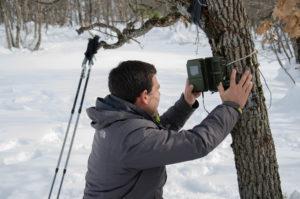 Placing wildlife camera (Photo: Salviamo L'Orso)