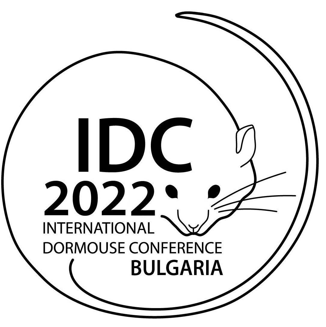 Logo IDC 2022